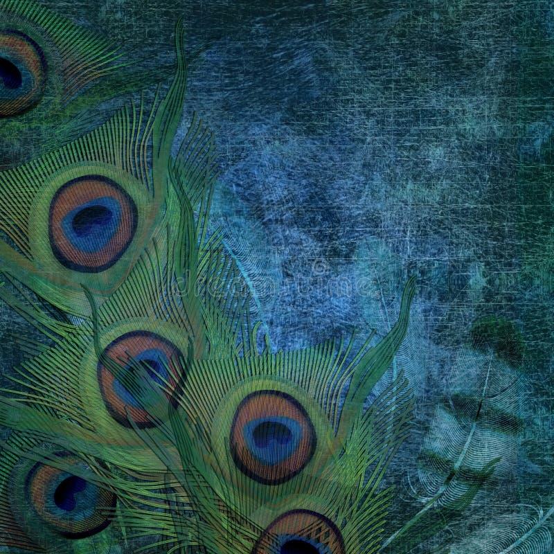 Fjäderbakgrund royaltyfri illustrationer