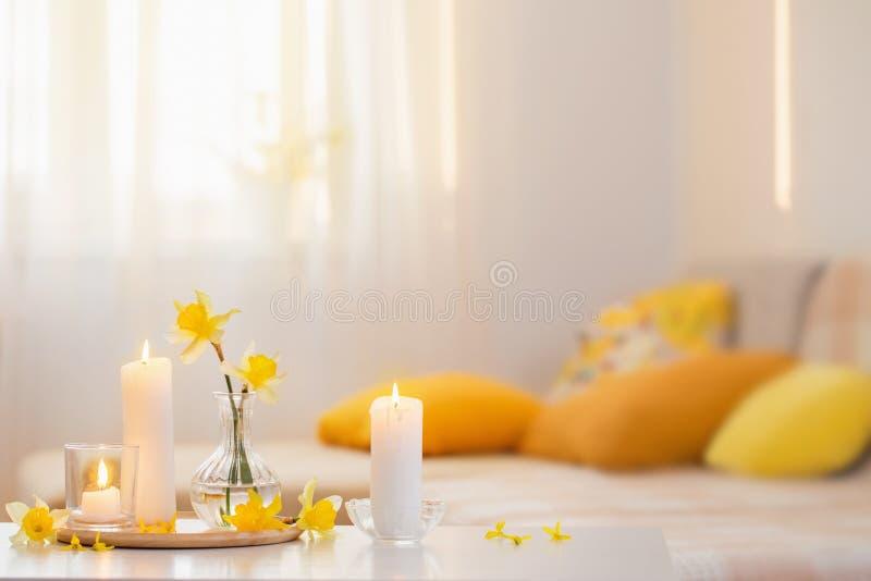 Fjäderblommor i vase på modern insida royaltyfria foton