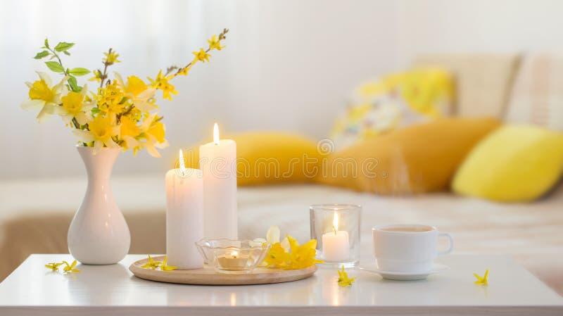 Fjäderblommor i vase på modern insida royaltyfri bild