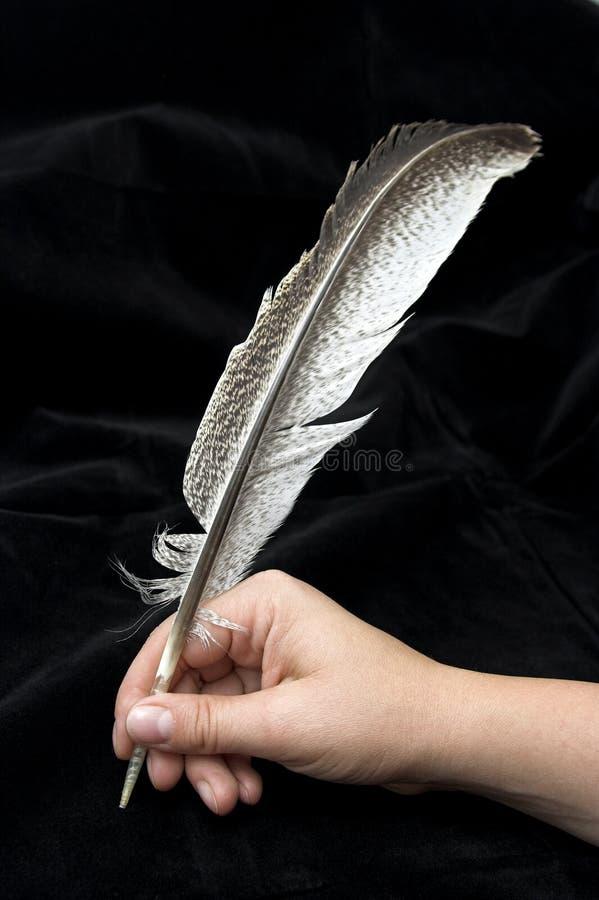 fjäderhandwriting arkivbild