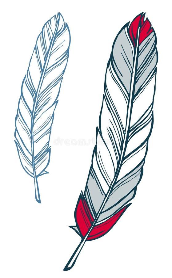 Fjäderillustration royaltyfri illustrationer