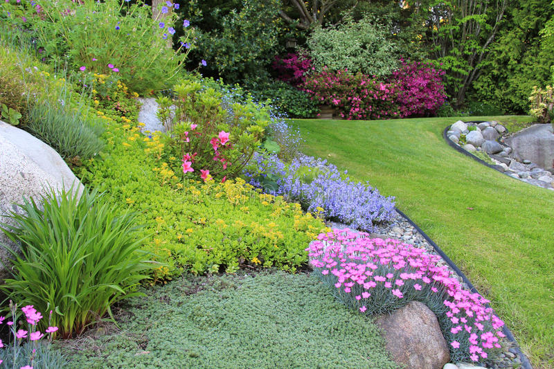 Fjäderträdgård