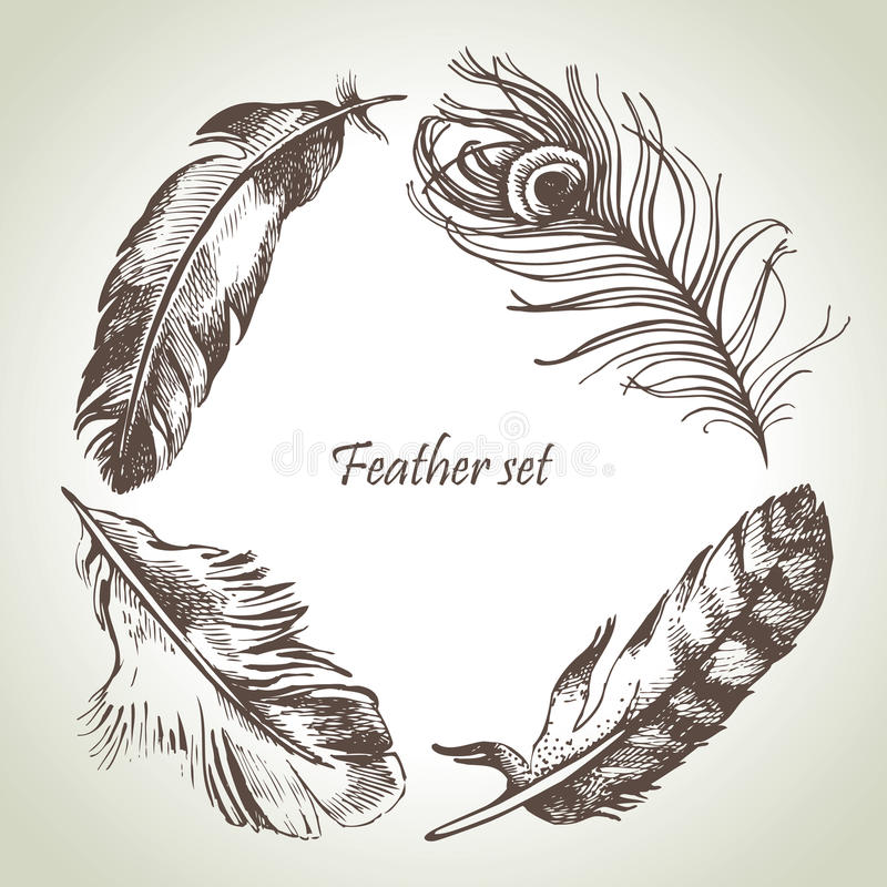 Fjäderuppsättning stock illustrationer
