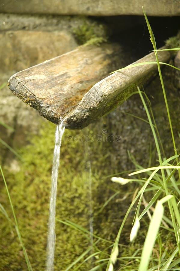 fjädervatten arkivbilder