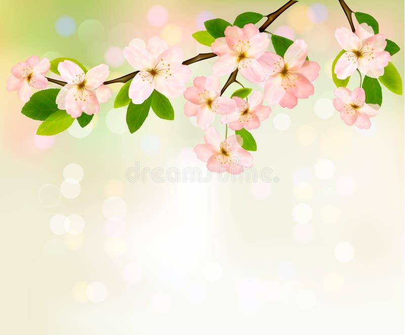 Fjädra bakgrund med den blomstra treen   royaltyfri illustrationer