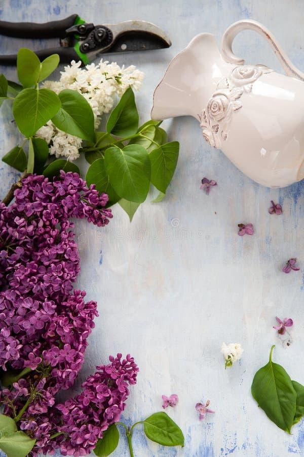 Fjädra bakgrunder, lilan, trädgårds- sax och vasen fotografering för bildbyråer