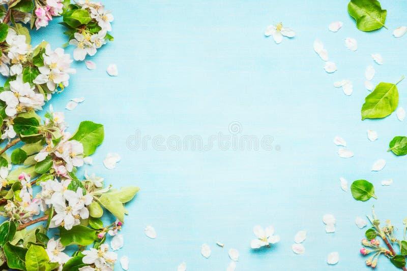 Fjädra blomningen på blå turkosbakgrund, bästa sikt royaltyfri foto