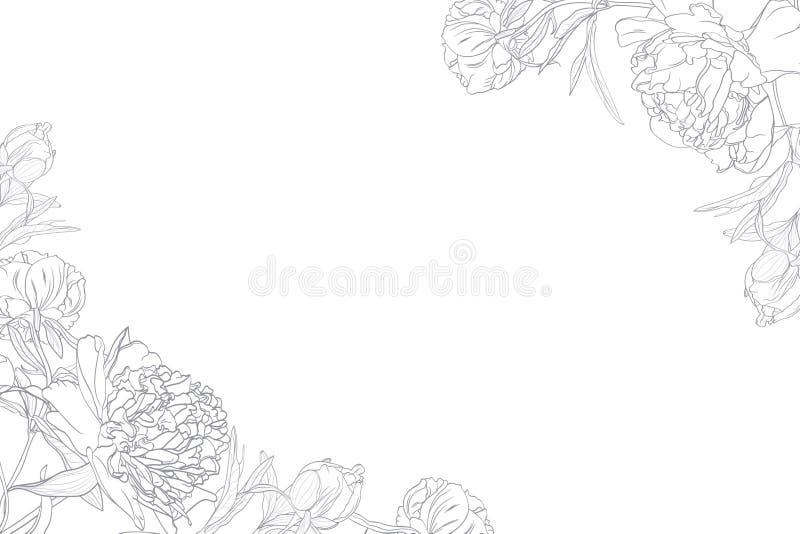 Fjädra den blom- gränsrammallen med det dekorerade hörnet Pionblommor royaltyfri illustrationer