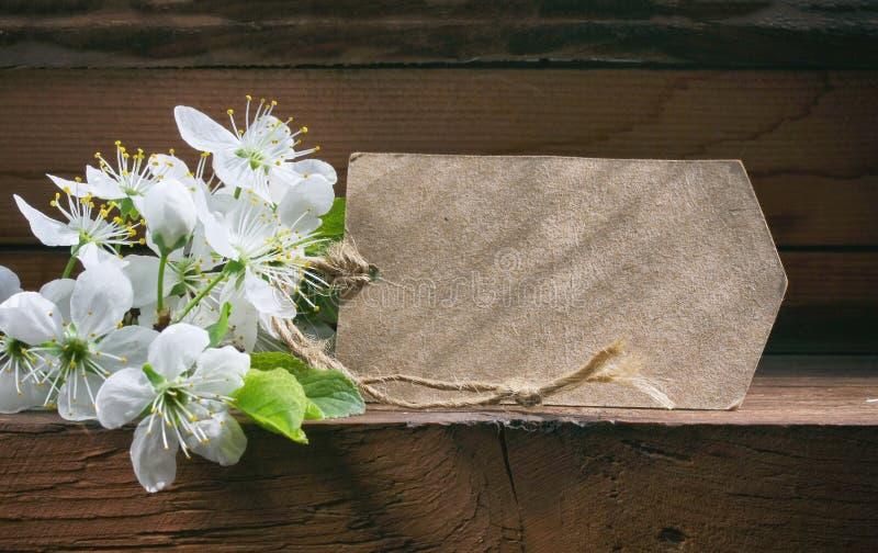 Fjädra feriebakgrund, den blommande plommonet och pappersetiketten arkivbilder