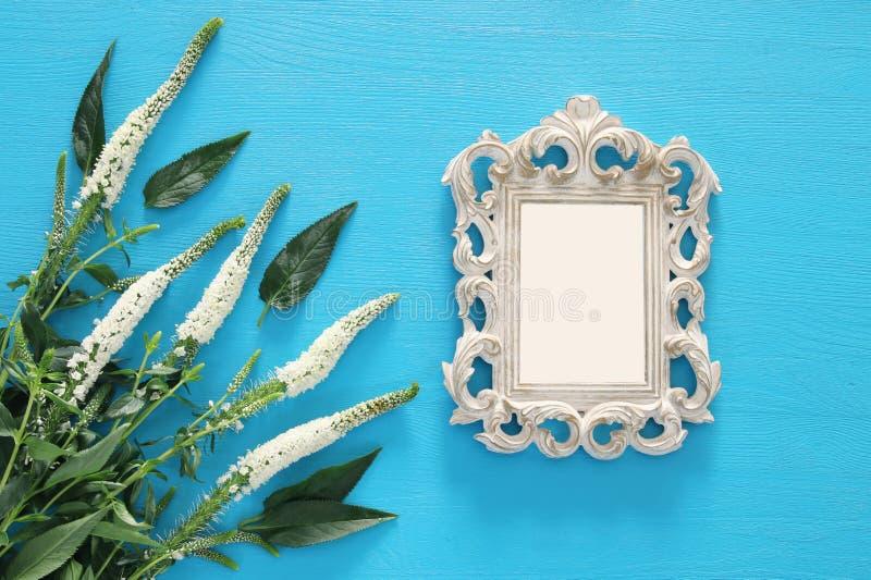 fjädra härliga vita blommor och förbigå victorianfotoramen royaltyfri bild
