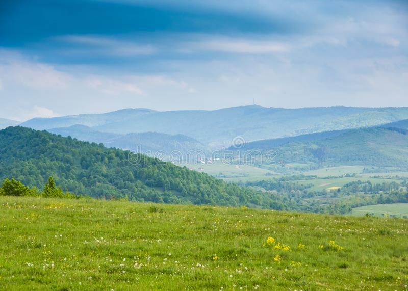 Fjädra i berg Fält av vårblommor och blåa ountains royaltyfria bilder