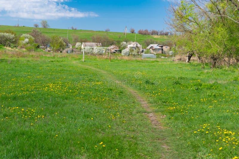 Fjädra landskapet med det gamla fotbollfältet som är bevuxet med maskrosen fotografering för bildbyråer