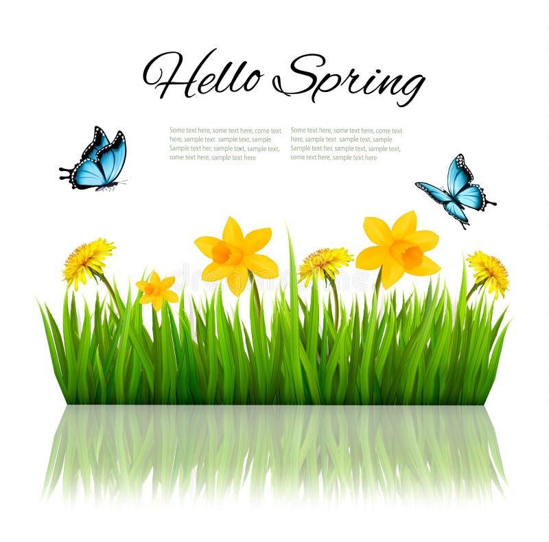 Fjädra naturbakgrund med grönt gräs, blommor och en fjäril stock illustrationer