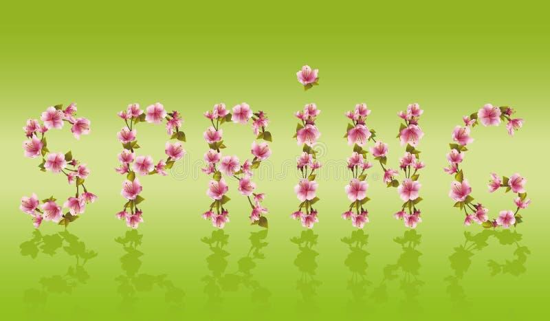 Fjädra ordet, japansk körsbärsröd blomning för det sakura trädet stock illustrationer