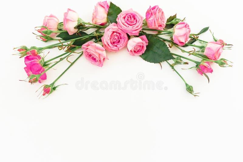 Fjädra sammansättning med rosa rosor på vit bakgrund Top beskådar Lekmanna- lägenhet Blom- ram av blommor, kopieringsutrymme fotografering för bildbyråer