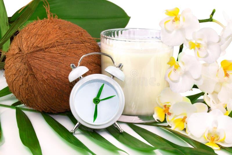 Fjädra sjukvårdbegreppet med kokosnöten, coco mjölkar, blomman och cl royaltyfri fotografi