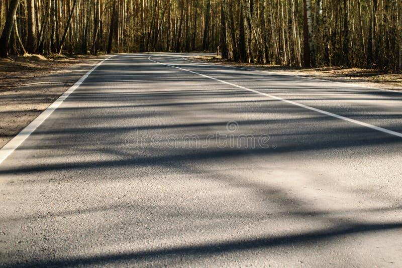 Fjädra skogvägen med skuggor i Moskvaregion, Ryssland fotografering för bildbyråer
