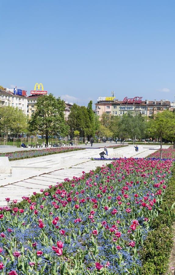Fjädra trädgården med tulpan som är främsta av den nationella slotten av kultur, Sofia, Bulgarien royaltyfri fotografi