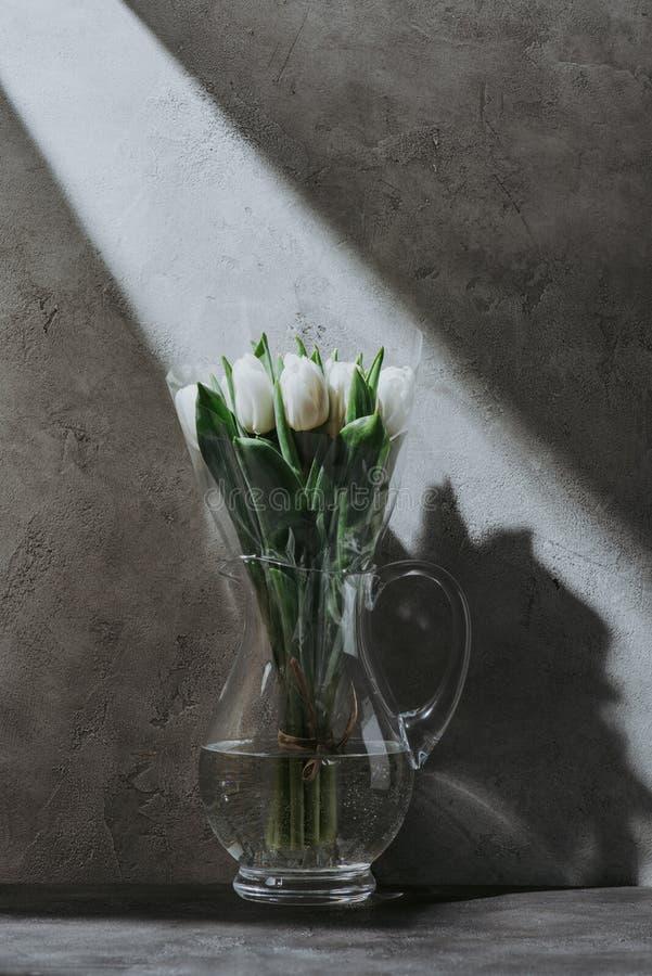 Fjädra tulpan i den glass tillbringaren på grå konkret yttersida med skugga royaltyfri foto