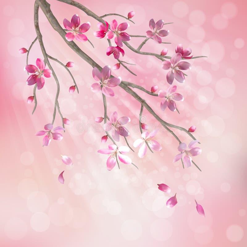 Fjädra vektortreen förgrena sig körsbärsröda blomningblommor stock illustrationer