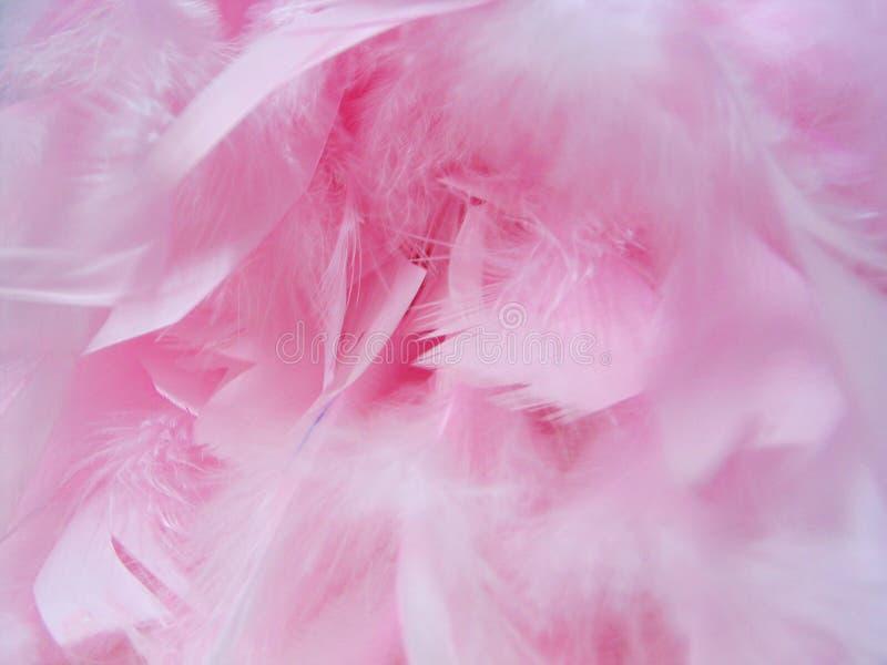Download Fjädrar fotografering för bildbyråer. Bild av glam, kläder - 47023