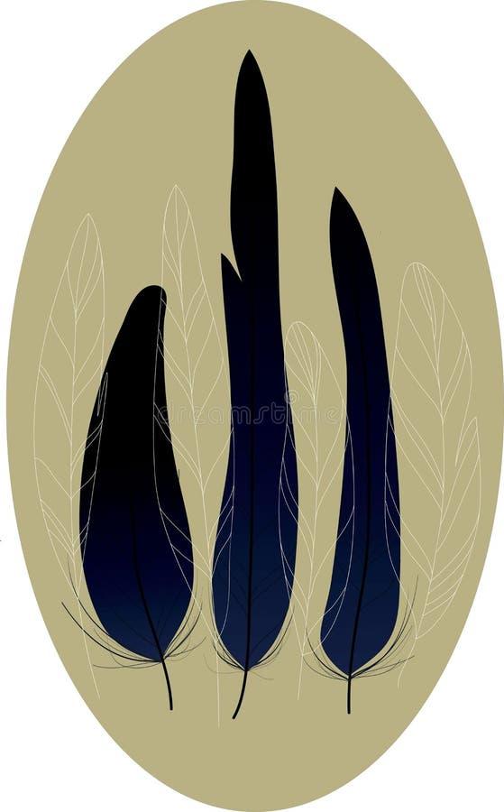 fjädrar royaltyfri bild
