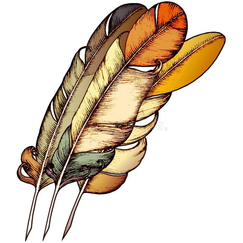 fjädrar isolerad romantiker tre royaltyfri illustrationer