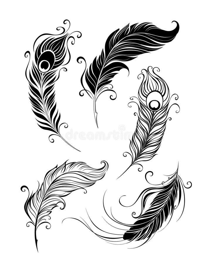 fjädrar isolerade objekt över setwhite vektor illustrationer