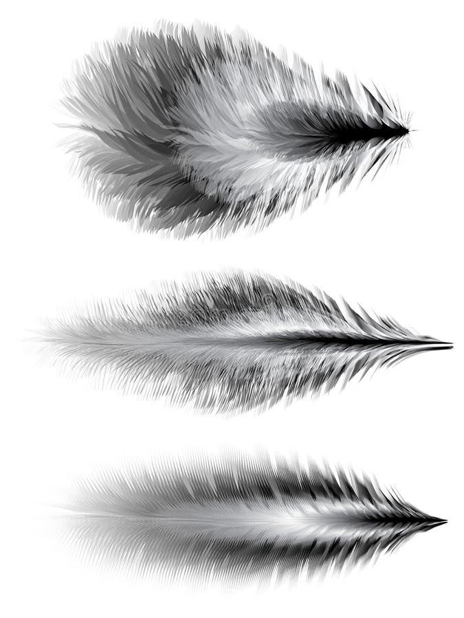 fjädrar isolerade objekt över setwhite vektor royaltyfri illustrationer