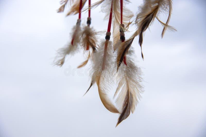 Fjädrar, laces och beads, en del av en Dreamcatcher, på en ljusbakgrund royaltyfri fotografi