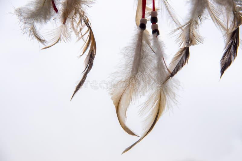 Fjädrar, laces och beads, en del av en Dreamcatcher, på en ljusbakgrund arkivbilder
