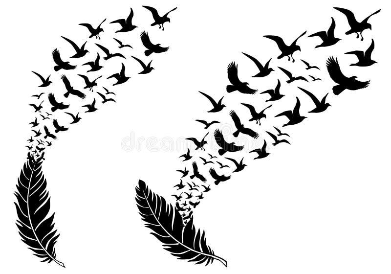 Fjädrar med flygfåglar, vektor royaltyfri illustrationer