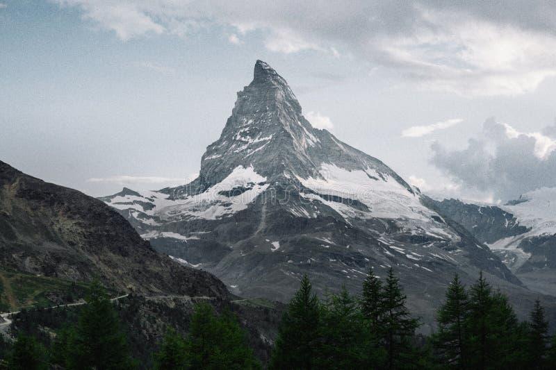 Fjällängberglandskap på Europa Schweiz royaltyfri fotografi