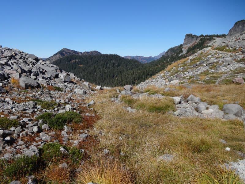 Fjällripa Ridge Trail i nedgång royaltyfria foton