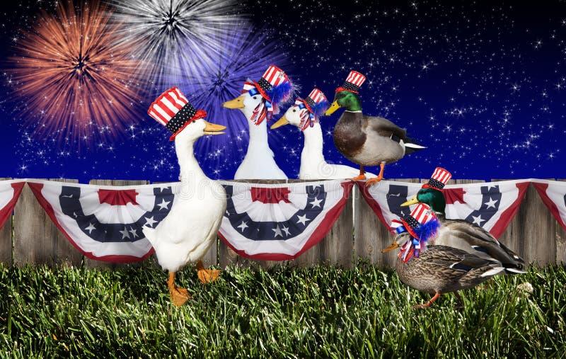 Fjärde Juli Duck Party fotografering för bildbyråer
