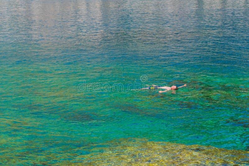 Fjärder för Anthony Quinn ` som s badar arkivbild