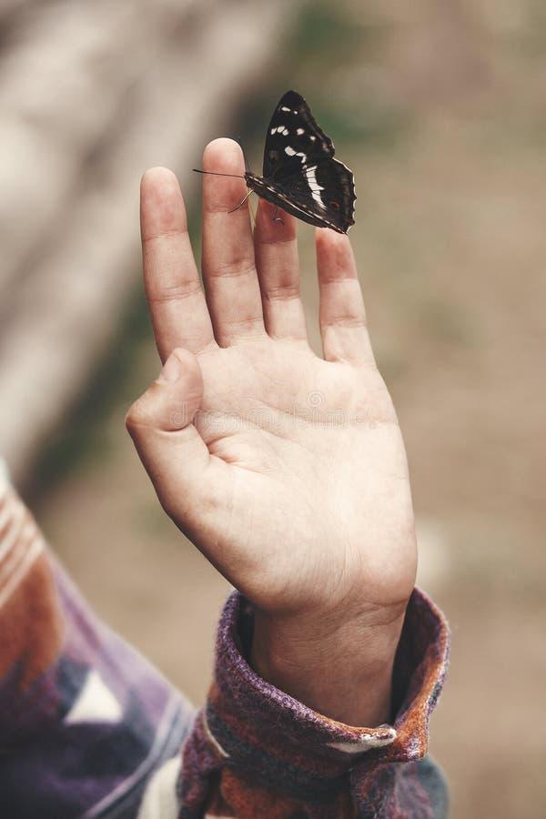 Fjäril för purpurfärgad kejsare förestående av flickan i sommarberg Apaturairis Handelsresande för ung kvinna med fjärilen som un arkivfoton