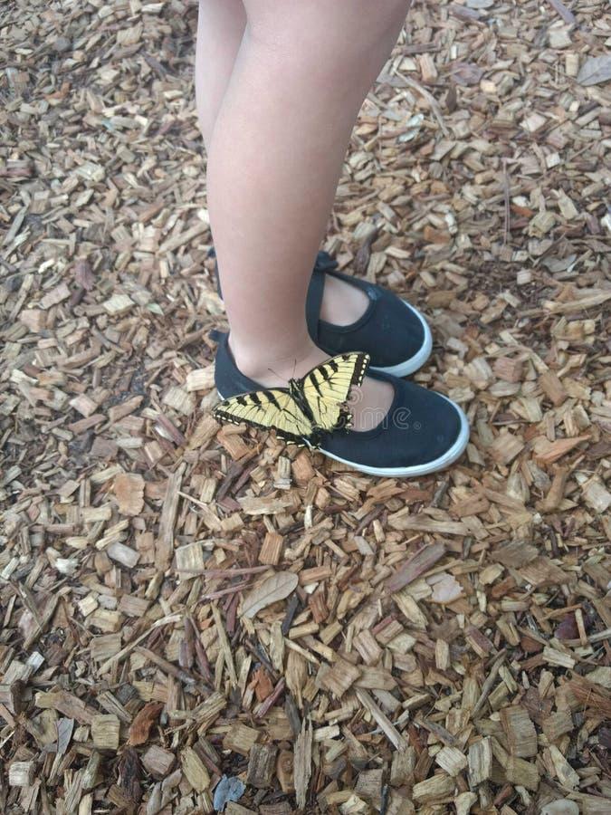 Fjäril på fötter arkivfoton