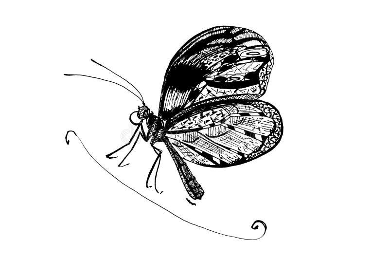 Fjäril Skissa av fjärilstatuering stock illustrationer