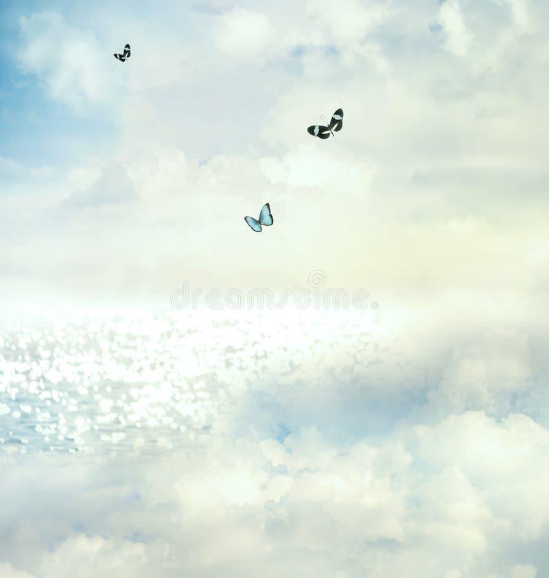 Fjärilar i skyen royaltyfri fotografi