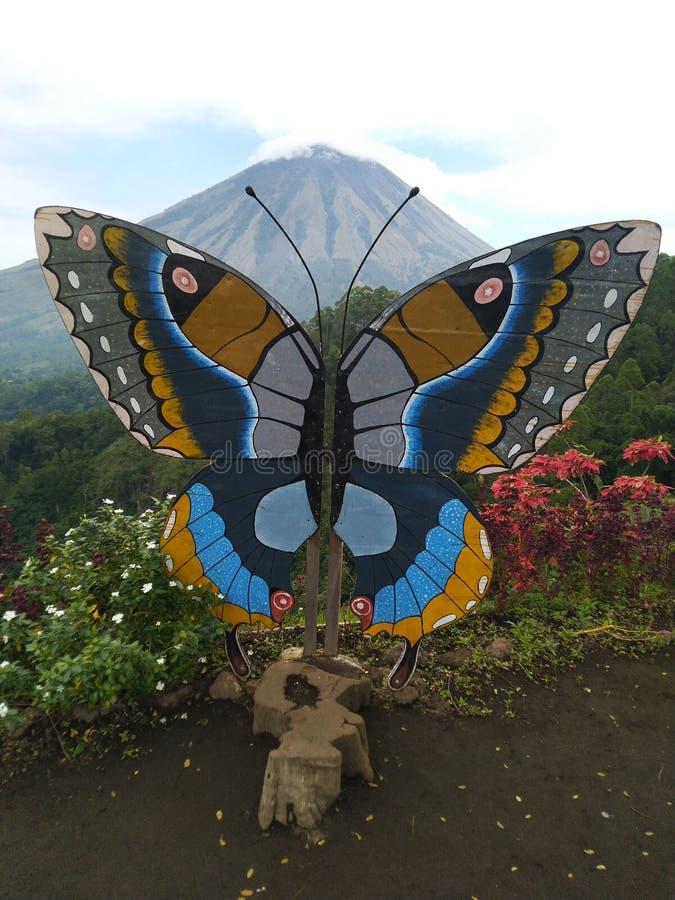 Fjärilar ställde in i monteringen Inerie Manulalu Bajawa royaltyfri fotografi