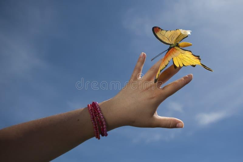 fjärilen hand försiktigt holdingkvinnayellow arkivfoto