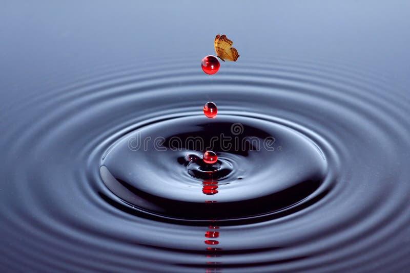Fjärils- och vattendroppe vektor illustrationer