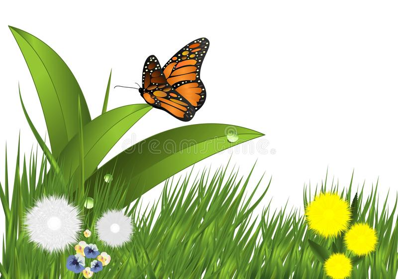 fjärilscdrblommor gräs vektorn vektor illustrationer