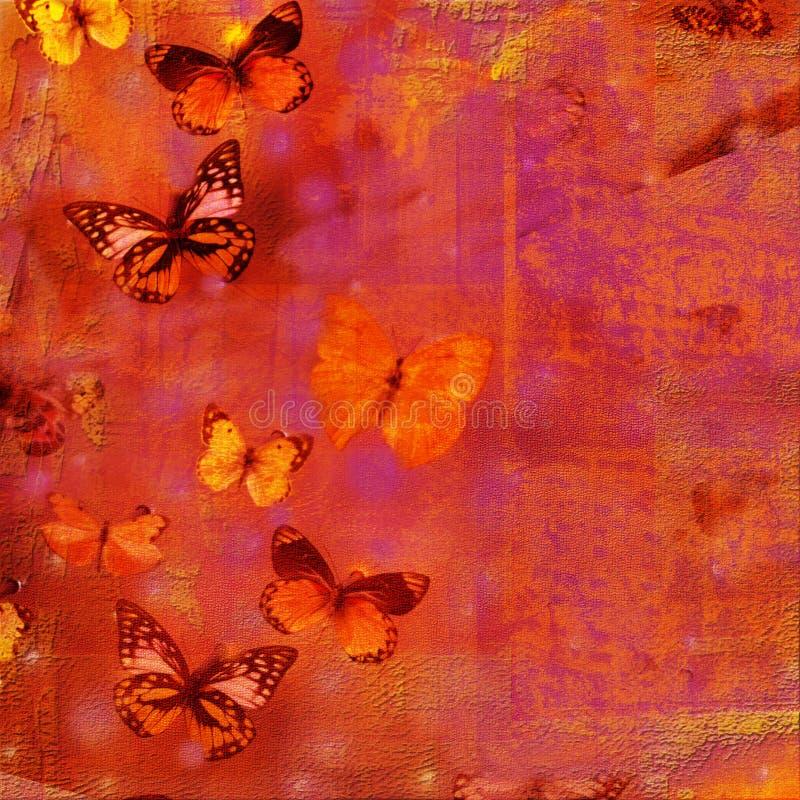 fjärilscollage royaltyfria foton
