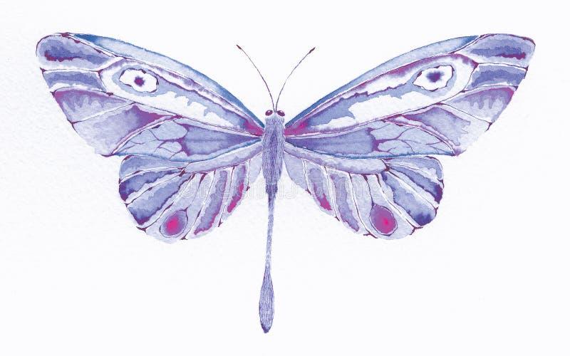 fjärilsfantasipurple royaltyfri illustrationer