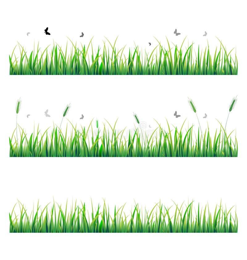 fjärilsgräsvektor royaltyfri illustrationer