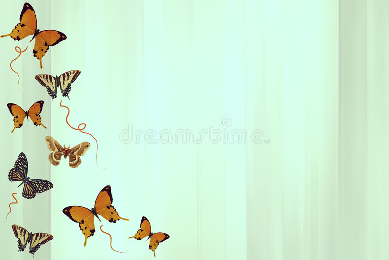 fjärilsserie royaltyfri illustrationer
