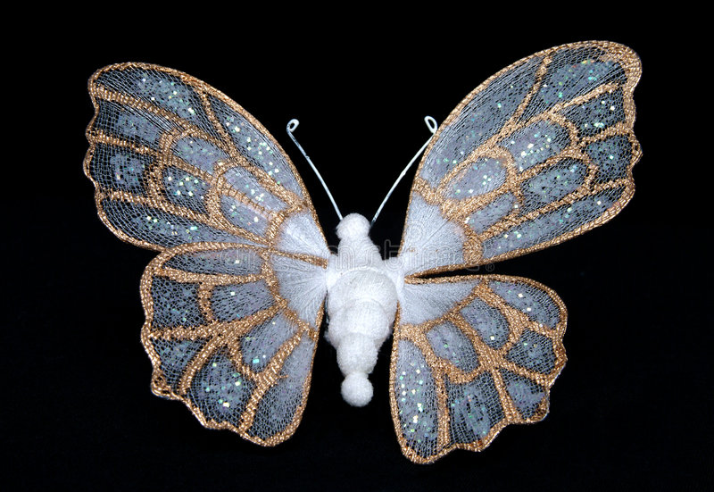 fjärilssilk arkivbild