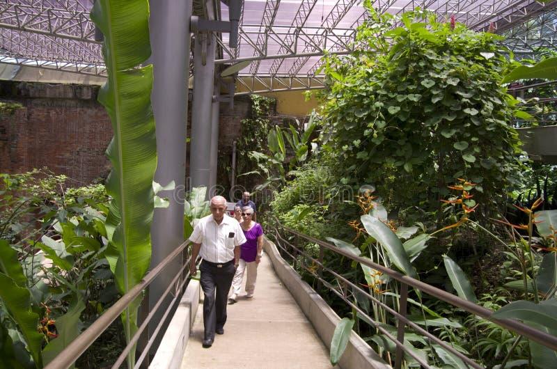 Fjärilsträdgård i det nationella museet av Costa Rica arkivbild